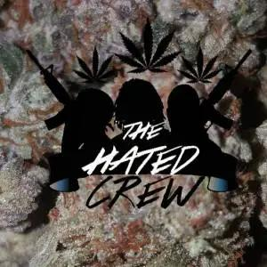 Analog Beats Presents The Hated Crew