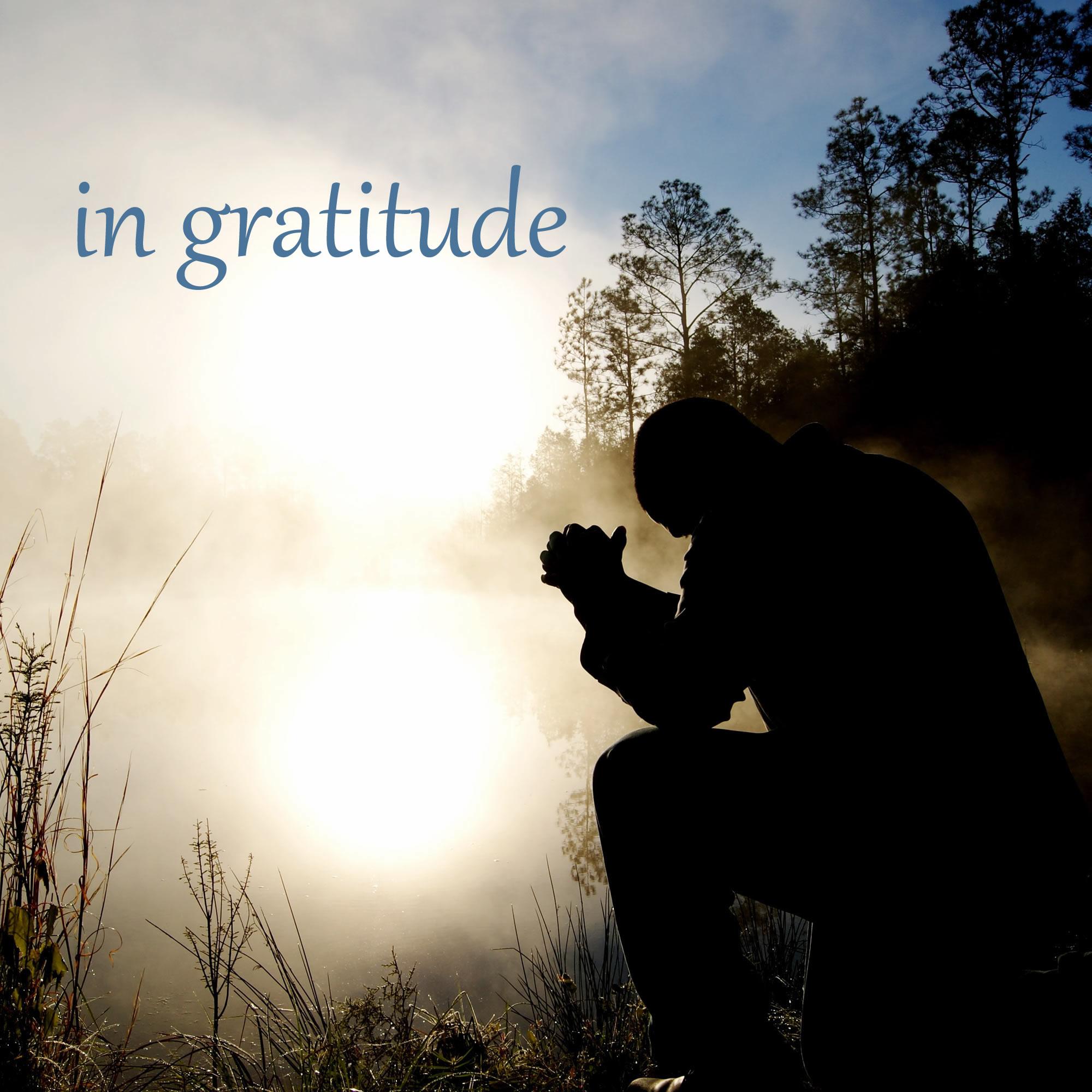 in-gratitude-FINAL-COVER-ART